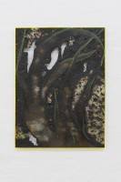 Davide Zucco, Black plant, 2017, oil, spray paint, pigment, aluminium foil, combustions and varnish on wood, plexiglass frame